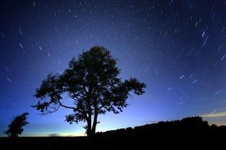 ふたご座流星群.jpg