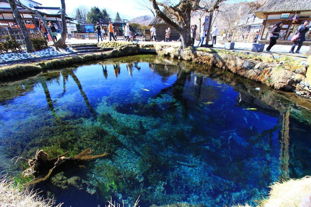 忍野八海 湧池.jpg