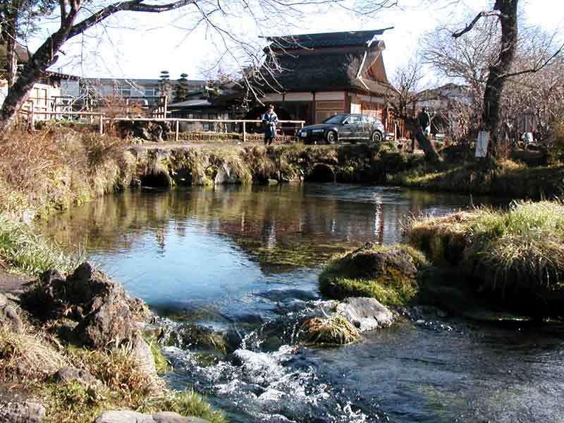 忍野八海 濁池.jpg