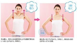 肩甲骨10.jpg